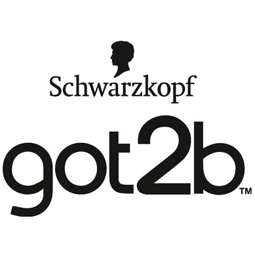 Got2b